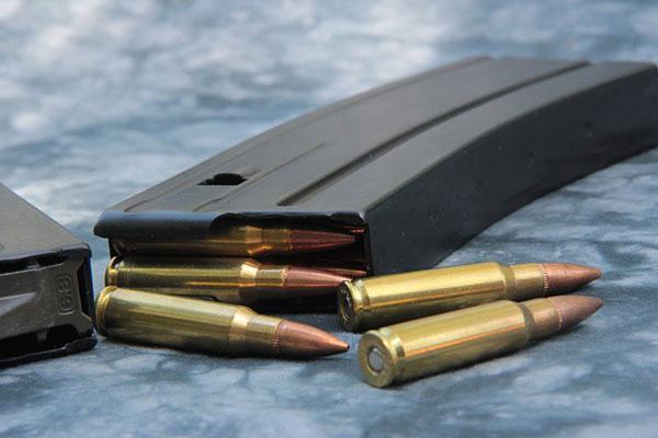 Magazine Bullets
